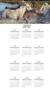 Calendriers annuels sur le thème des chevaux