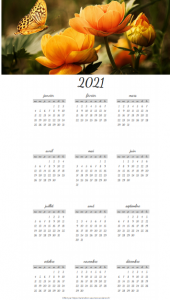 Calendrier annuel sur le thème des Papillons.
