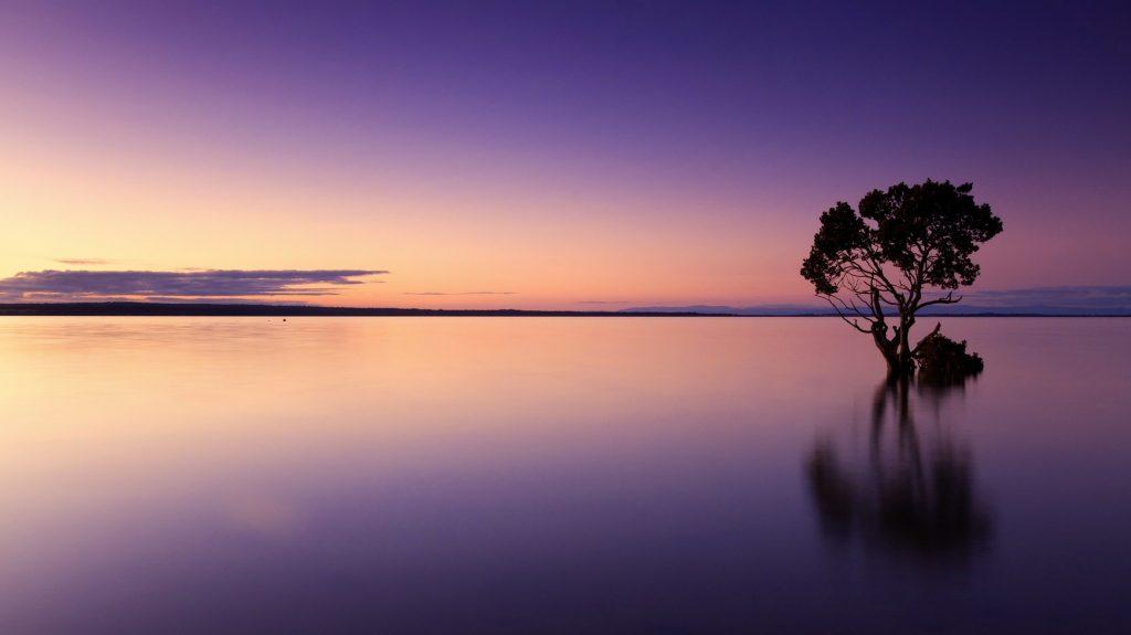 Paysage zen sur la mer